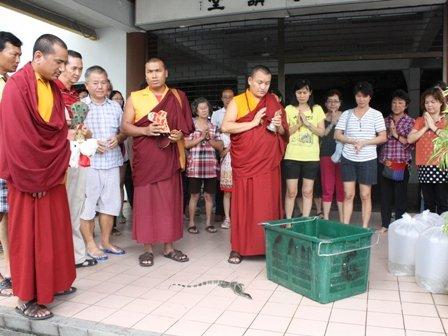 第14世迦旺罗德上师(Ngawang Lodoe Rinpoche)主持放生仪式。